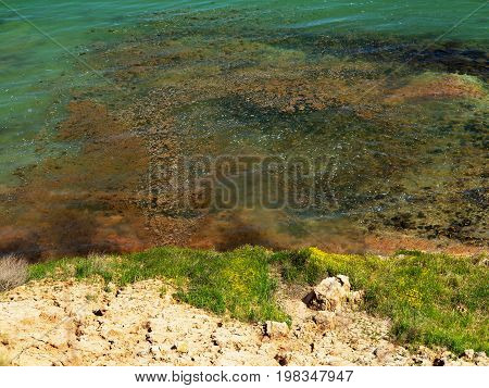 Authentic Landscape Of Polluted Sea Water. Sewage Drains Into The River, The Sea, The Lake. Environm