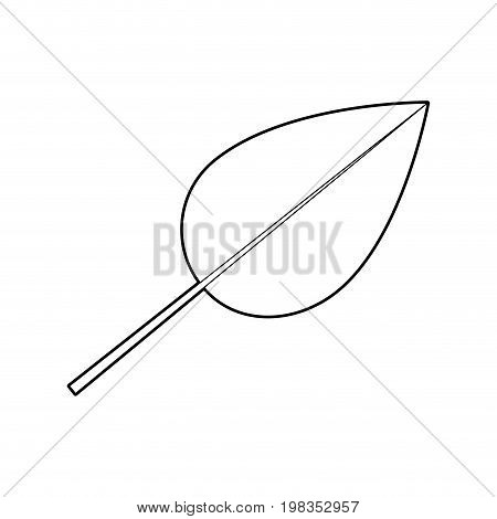 sketch silhouette of ovoid leaf with branch vector illustration