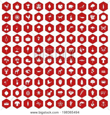 100 live nature icons set in red hexagon isolated vector illustration