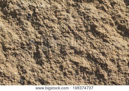 Sandy texture close up. Sand illuminated by sun.