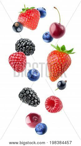 Isolated Various Berries