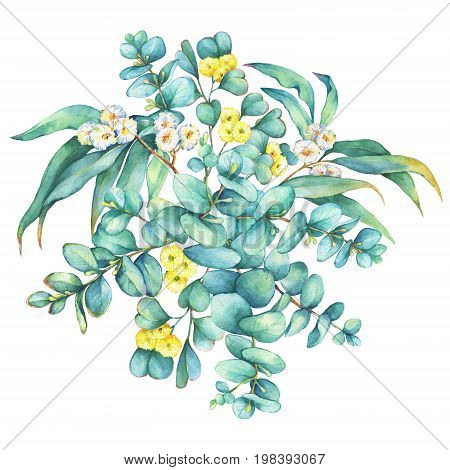 Green floral round wreath with a branch of silver-dollar eucalyptus cordata and Eucalyptus websteriana (Heart-leafed), isolated on white background. Watercolor hand drawn painting illustration.