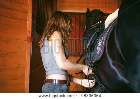 Woman Wears A Saddle Horseman Friesian Horse In The Stables On The Farm, Taking Care Of Purebred Pet