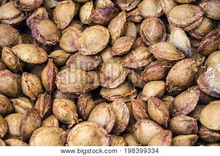 Apricot kernels on white ground, pictures of apricot kernels used in medicine and pill making,