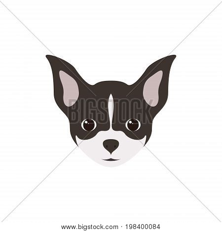 Portrait of Chihuahua Puppy. Simple Dog. Vector illustration.
