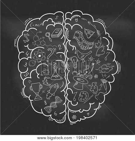 Creative concept of the human brain on the chalkboard. Left and right side. Brain left and right side hemispheres concept. Vector illustration