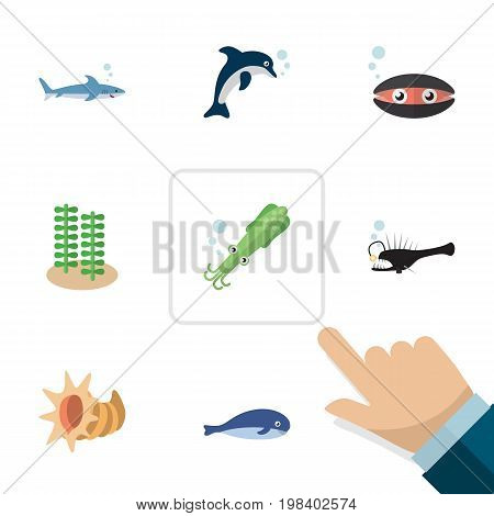 Flat Icon Marine Set Of Cachalot, Fish, Scallop And Other Vector Objects