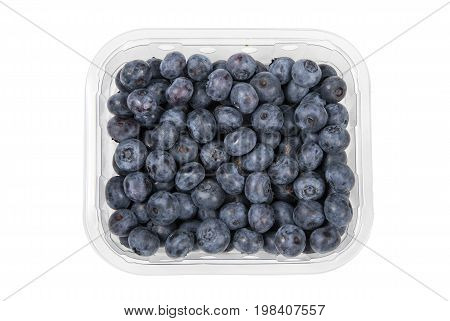 Blueberries in a plastic container cut out and isolated on a white background