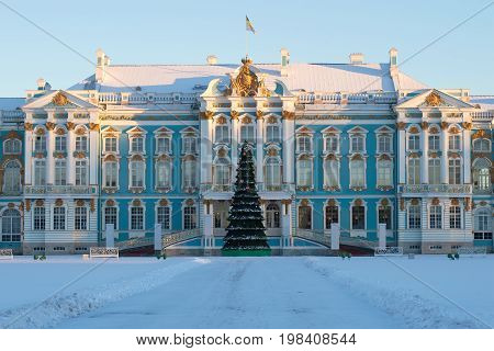SAINT PETERSBURG, RUSSIA - FEBRUARY 06, 2017: Christmas fir-tree in the background of the Catherine Palace in the winter. Tsarskoye Selo