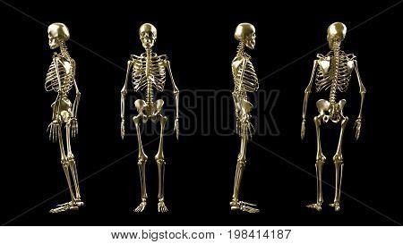 Golden 3D Skeleton Isolated