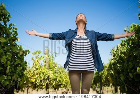 Beautiful vintner standing with arms outstretched in vineyard on a sunny day