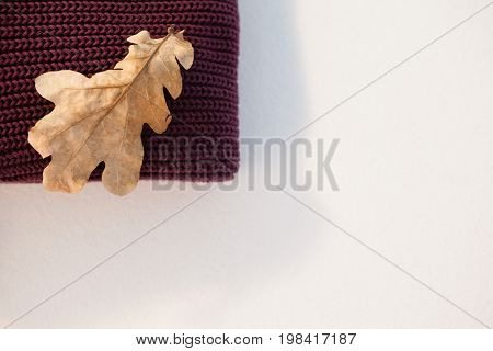 Woolen cloth with autumn leaves on white background