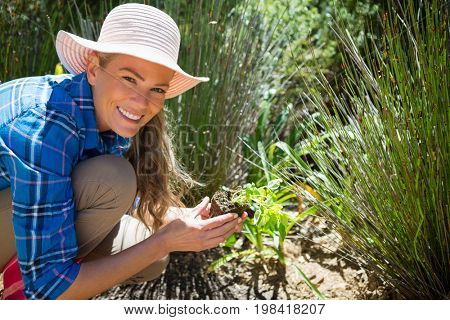 Portrait of happy woman planting sapling in garden on a sunny day