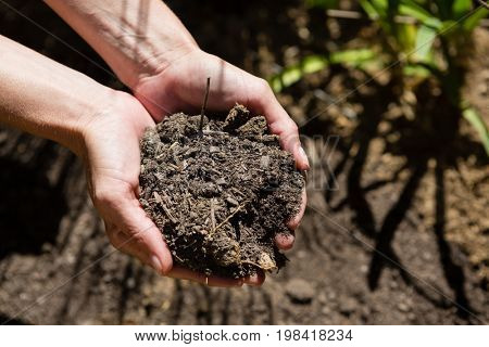 Woman holding soil in garden on a sunny day