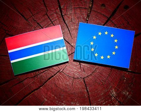 Gambian Flag With Eu Flag On A Tree Stump Isolated