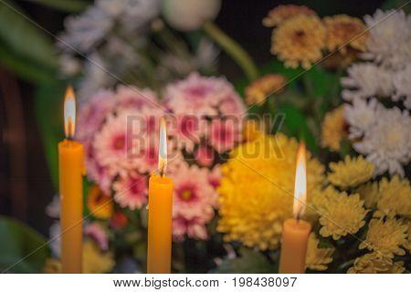 Flower Set Praying For God