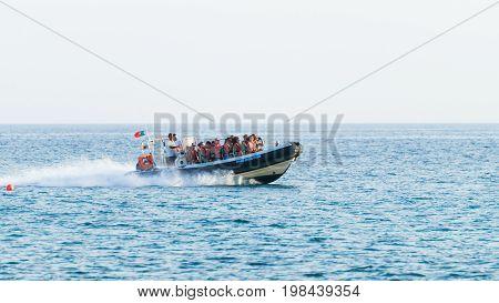 Speedboat experience boat in Algarve Portugal sea.