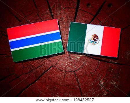 Gambian Flag With Mexican Flag On A Tree Stump Isolated