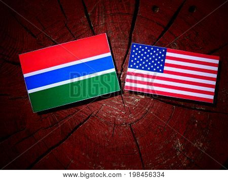 Gambian Flag With Usa Flag On A Tree Stump Isolated