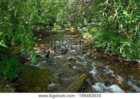 River kurma . lake Baikal,  russia nature