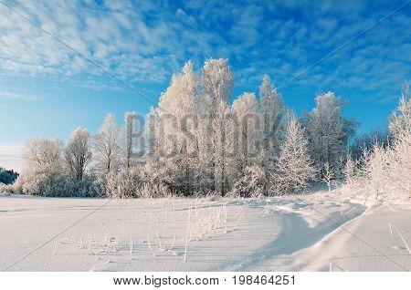 Winter landscape.Winter beauty scene  Winter  snowflake  background scene