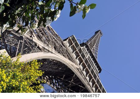 The Eiffel Tower in spring poster