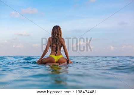 Happy girl in bikini have fun before surfing Surfer sit on surf board look at sunset sky. People in water sport adventure camp extreme activity on family summer beach vacation. Watersport background