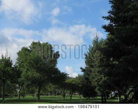 Cloud Formation with bright blue sky and trees in summer