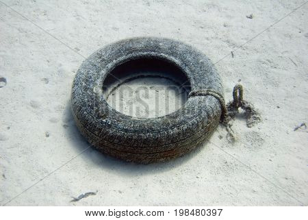 Old tire at the bottom of the sea color image selective focus horizontal image
