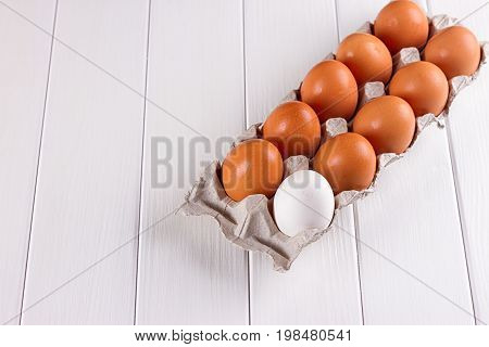 Container of ten eggs. Nine eggs brown one egg white. on white background.