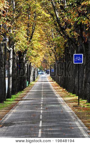 Parisian bicycle lane in autumn