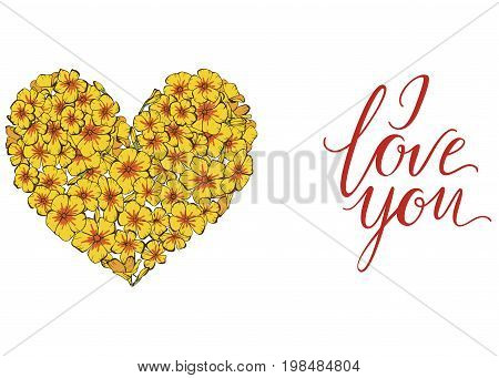 Heart of yellow phlox flowers isolated on white background. illustration. vector