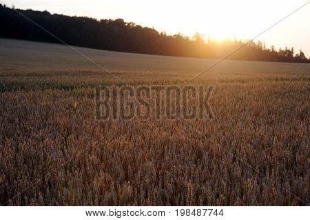 Sunset in Bohemian landscape, Czech republic, Europe