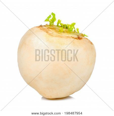 White Turnip Isolated On The White Background