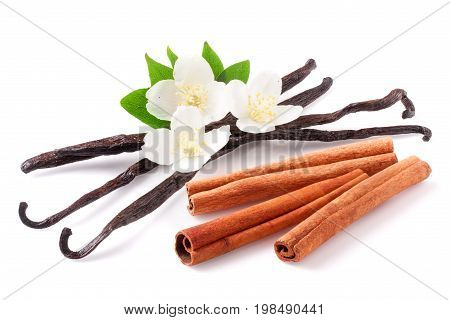 Vanilla sticks and cinnamon with flower isolated on white background.