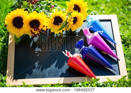 Table is in the meadow with school bags school day with sunflowers