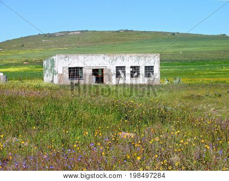 AN OLD RUSTIC FARM BUILDING IN THE MIDDLE OF A FIELD OF GRASS AND FLOWERS, WITH A GREEN HILL IN THE BACK GROUND