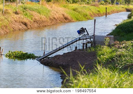 Farmers Pumping Water To Jasmine Rice Fields With Motor