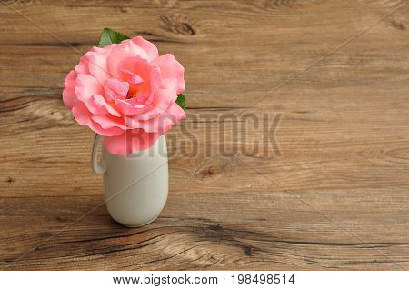 A single pink rose in a white vase