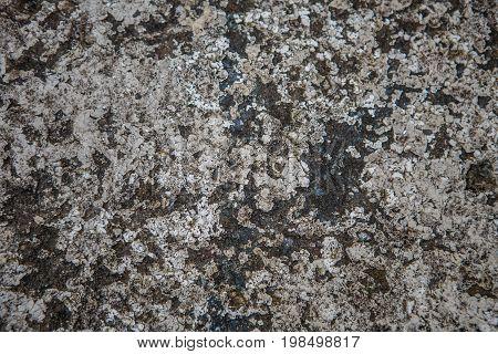 Photo texture of gray white stone. Background, pattern