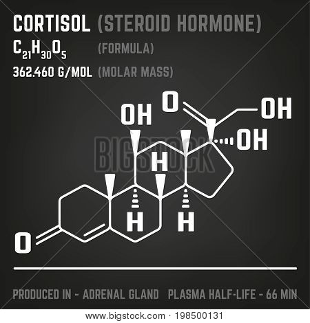 Cortisol molecule image. Vector illustration in white colour style on a dark grey background. Chemistry, biology, medicine and healthcare concept.