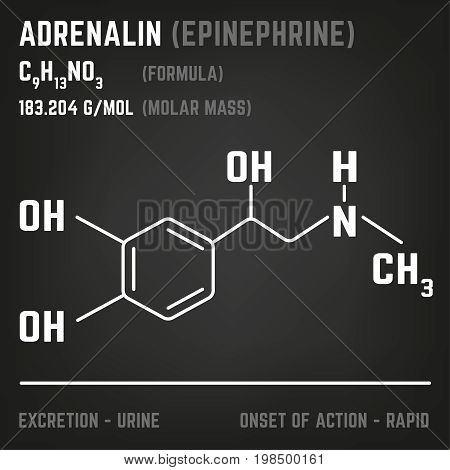 Adrenaline molecule image. Vector illustration in white colour style on a dark grey background. Chemistry, biology, medicine and healthcare concept.