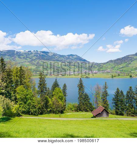 Summer calming pastoral landscape. Swiss countryside.  Canton Schwyz
