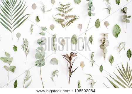 Floral pattern made of eucalyptus palm leaf green leaves branches on white background. Flat lay top view. Floral pattern. Pattern of flowers. Flowers pattern texture