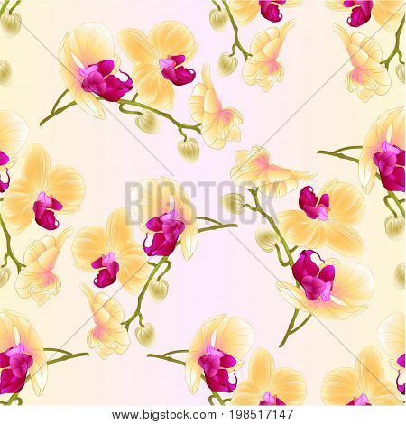 Seamless texture beautiful Orchid Yellow stem with flowers and buds closeup vintage vector editable illustration hand draw