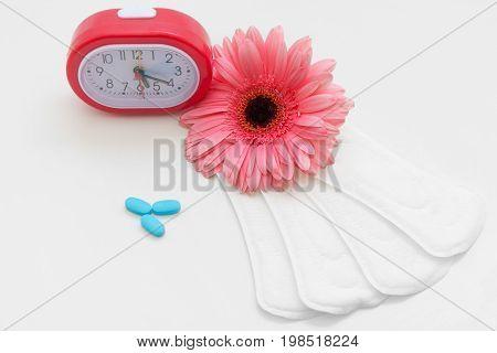 Menstruation Cycle Women Health Contraception Birth Control Pills Care Female Regular Pad Daily Concept