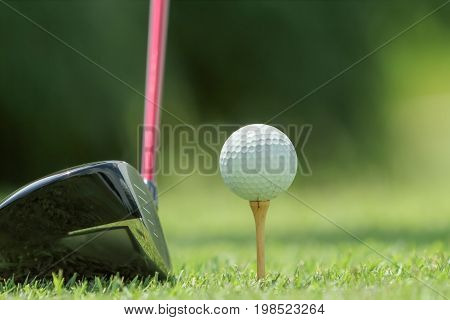 golf ball on a wooden tee .
