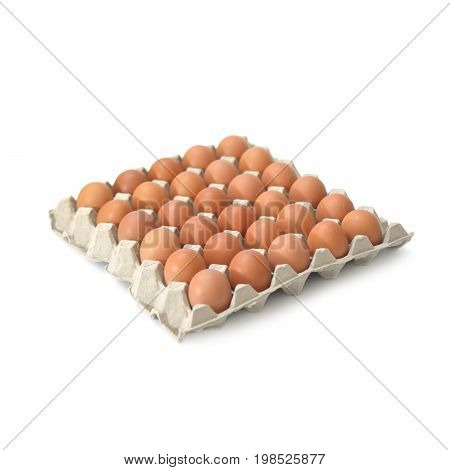 Group of fresh eggs in pater tray isolate on white background