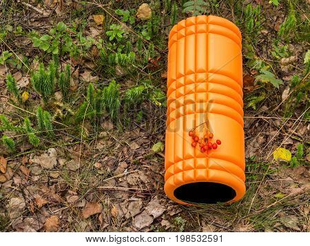 Orange foam roller in forest against green grass and leaves background with cluster of berries