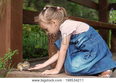 Little girl feeding a chipmunk outdoors on a warm summer day.